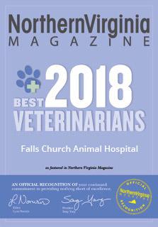 Falls Church Animal Hospital | Veterinarian Falls Church
