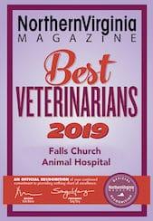 2019 best veterinarians
