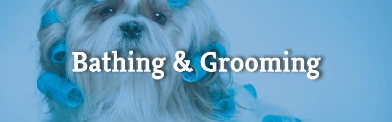 mobile bathing and grooming